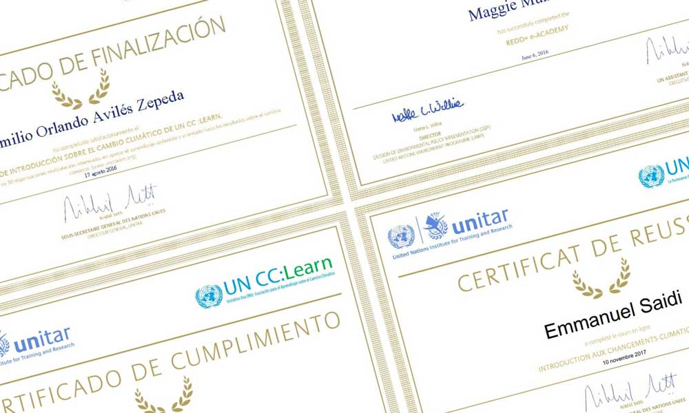Images of certificates of completion of training provided by the platform.